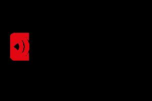 PIGINI_logo
